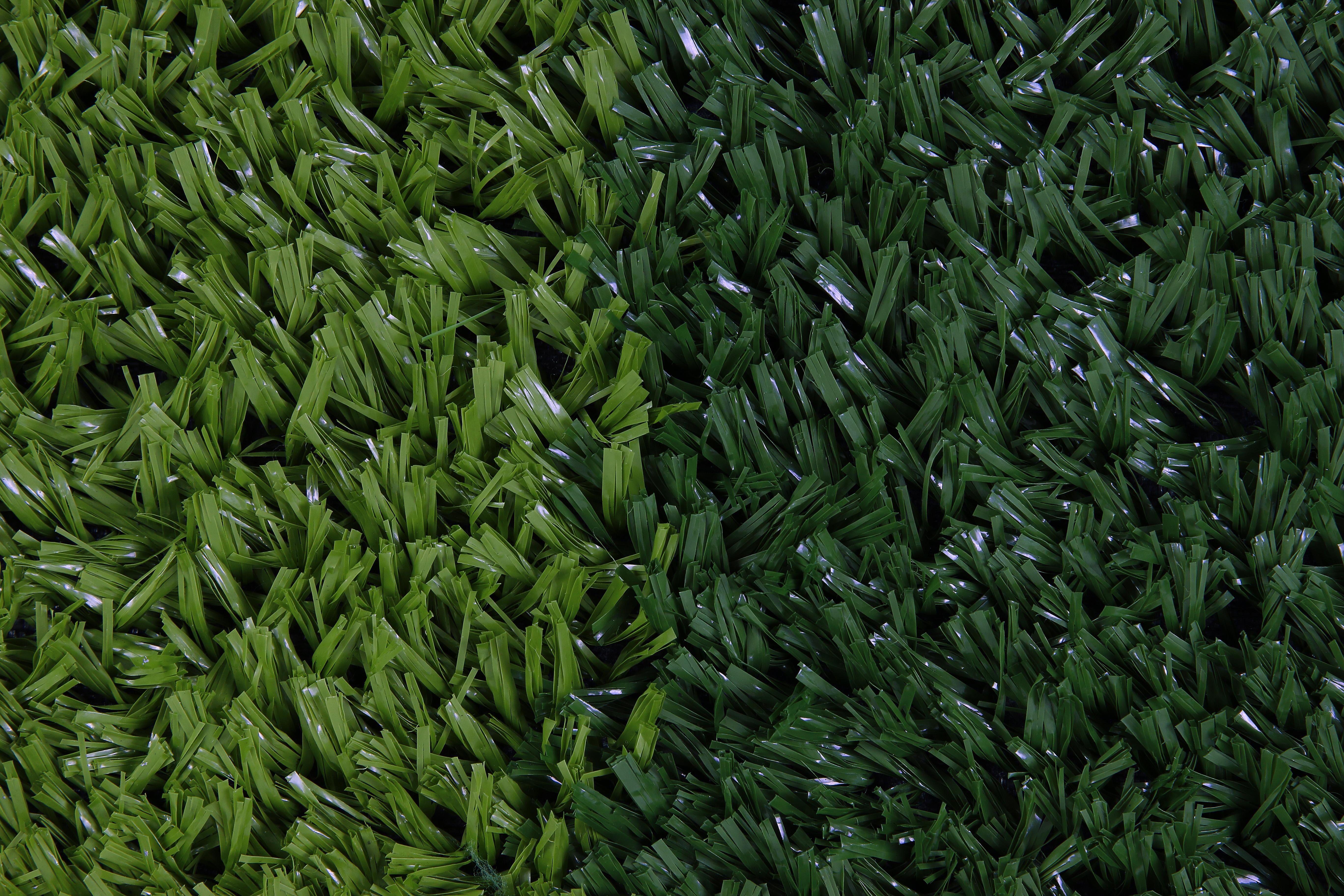 2-)TENİS GRASS (2)