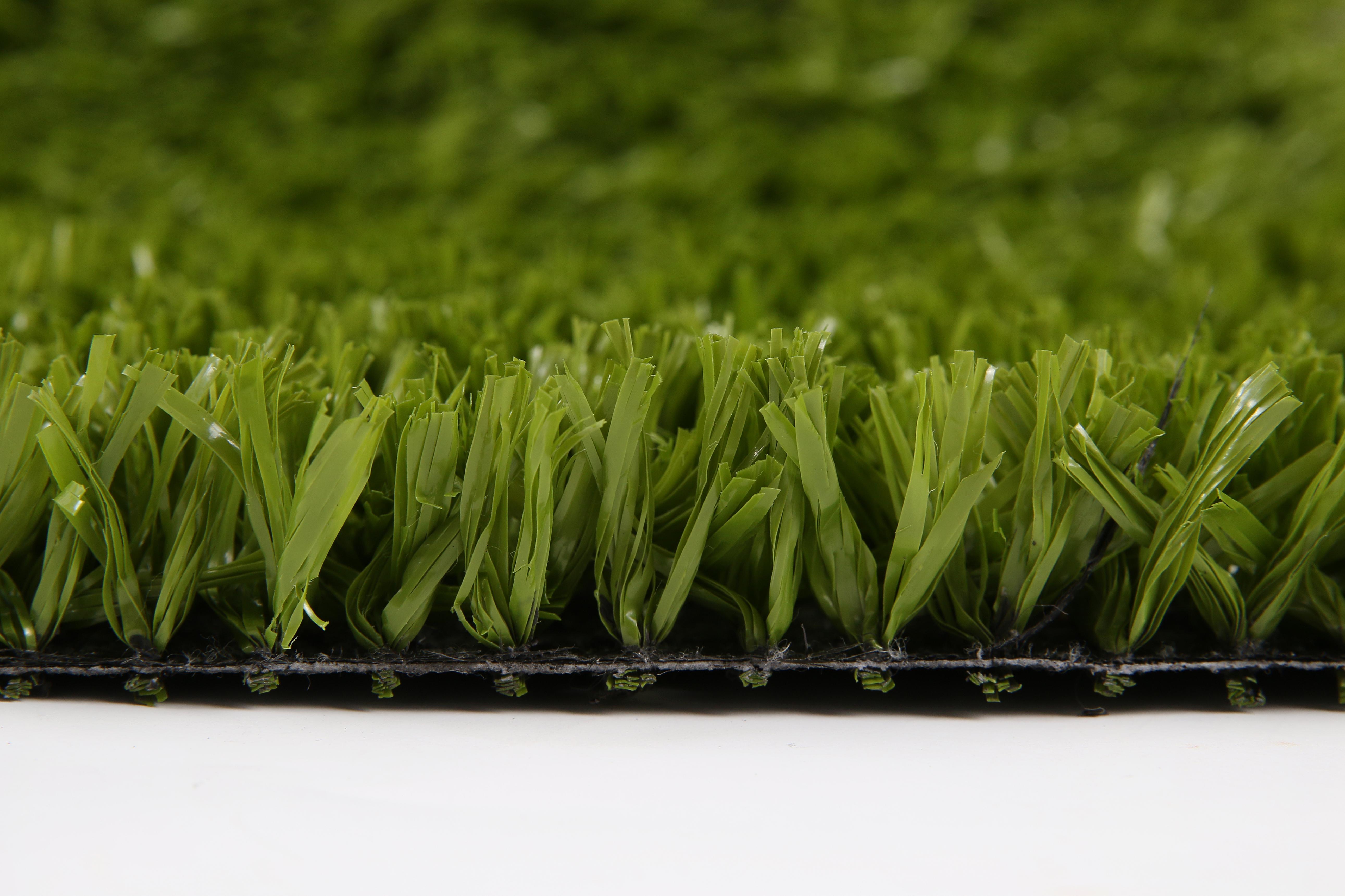 2-)TENİS GRASS (4)